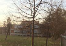 La Scuola Primaria Tiboni di Urago