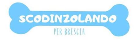 Scodinzolando per Brescia - 12 gennaio